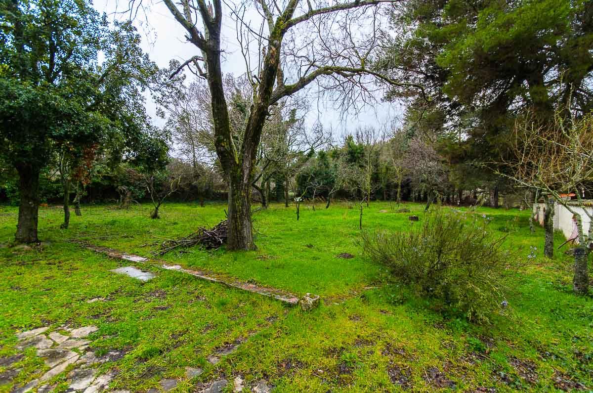 Foto 14 - Villa in Vendita a Manfredonia - località Pastini frazione montagna